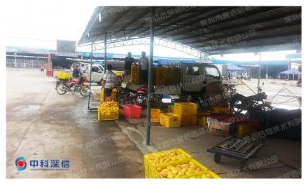 新亚东农产品集团(广西 田东)