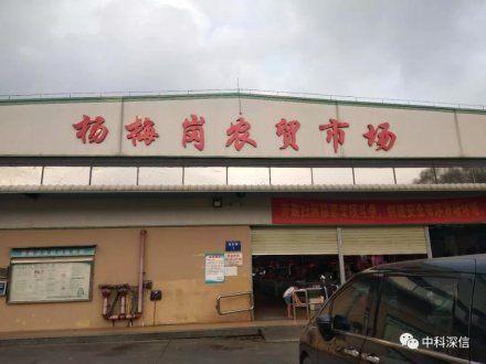 深圳杨梅岗市场